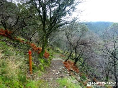 Sierra de Gata, Trevejo,Hoyos,Coria; bosque de irati la charca verde la bola del mundo los ancares